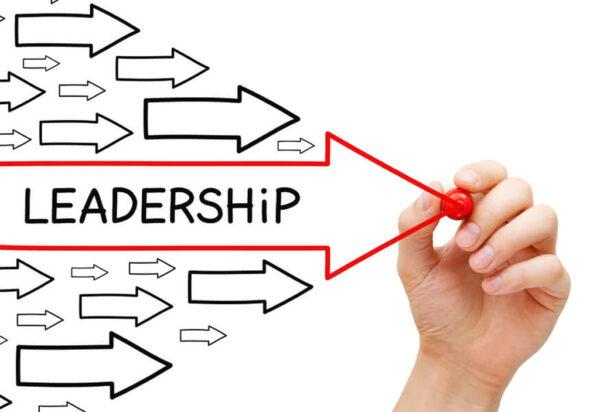 Play Leadership Online